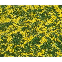 Faller 180463 HO 1/87 Segment de paysage PREMIUM, Champ de colza