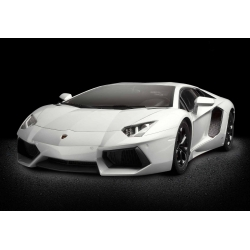POCHER HK101 1/8 Lamborghini Aventador Shiny White Model Kit