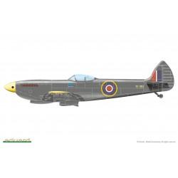 ICM 48181 1/48 C-45F/UC-45F, WWII USAAF Passenger Aircraft