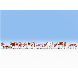 NOCH 15723 HO 1/87 Cows, brown-white