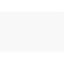 ITALERI Acrylic 4780AP Schwarzgrun RLM 70 20ml