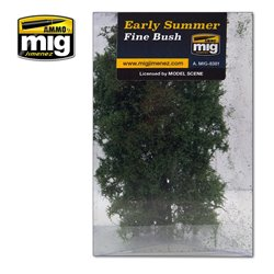 AMMO BY MIG A.MIG-8381 Buisson - Fine Bush Early Summer