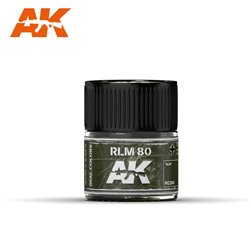 AK INTERACTIVE RC284 RLM 80 10ml