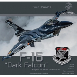 HMH Publication SLE001 F-16 Dark Falcon