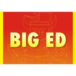 """SPECIAL HOBBY SH48150 1/48 SAAB SK-37E Stör-Viggen """"Electronic Warfare Agressor"""""""