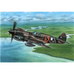 SPECIAL HOBBY SH72338 1/72 P-40E Warhawk 'Claws and Teeth'