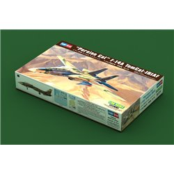 HOBBY BOSS 81771 1/48 IRIAF Persian Cat F-14A Tomcat