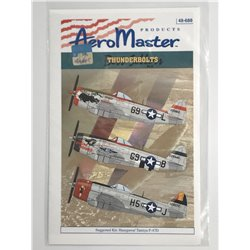 AEROMASTER 48-688 1/48 Best Sellers Thunderbolts Pt.II
